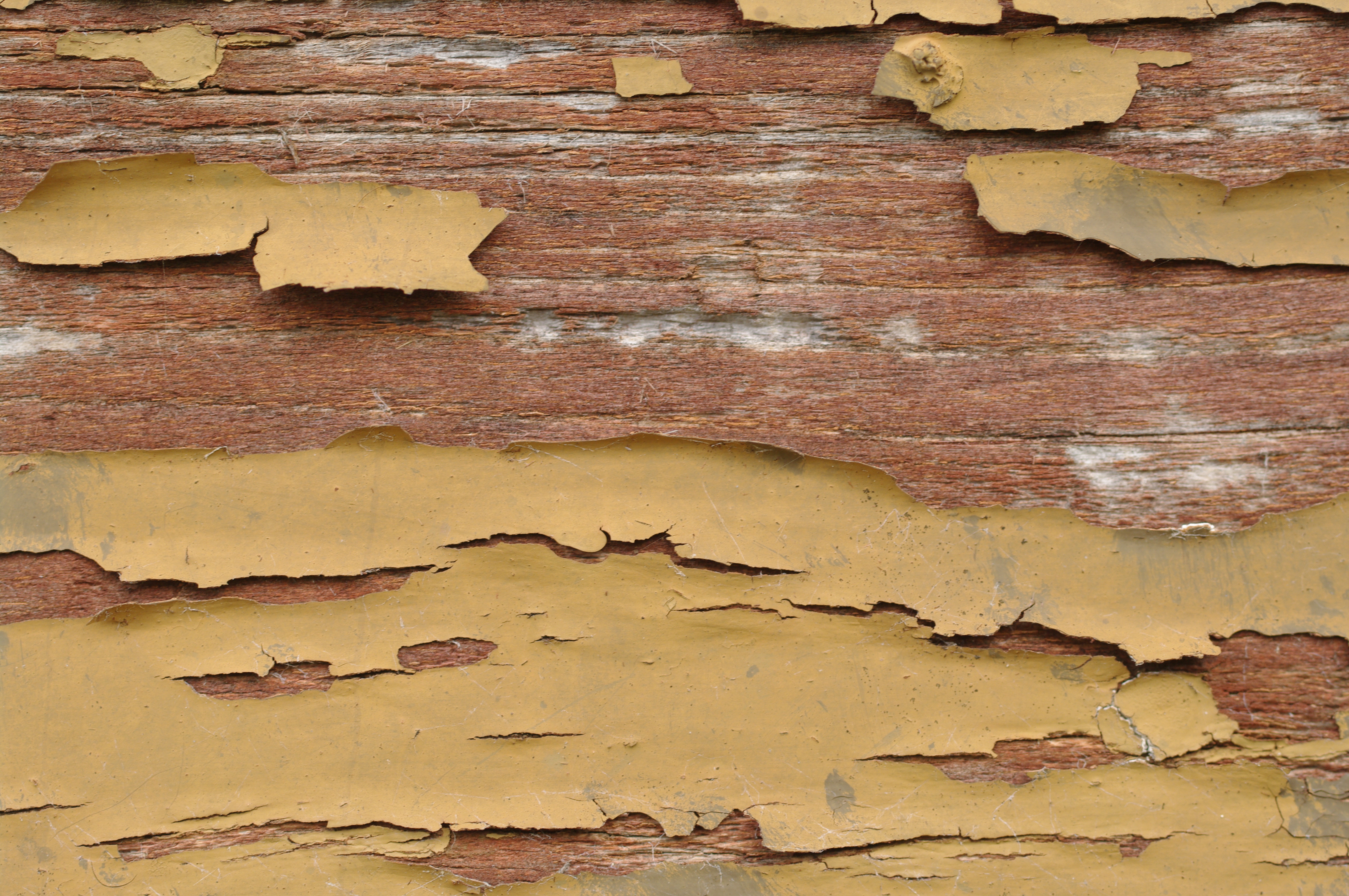 Risks of degradation of outdoor wood.